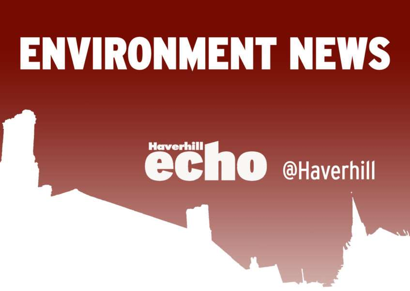 Latest environment news from the Haverhill Echo, haverhillecho.co.uk, @haverhill on Twitter