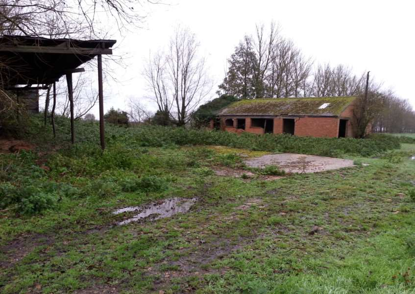 The site the charity Sky Badger wants to use. Barn owls nest in the brick building. ANL-151124-094343001