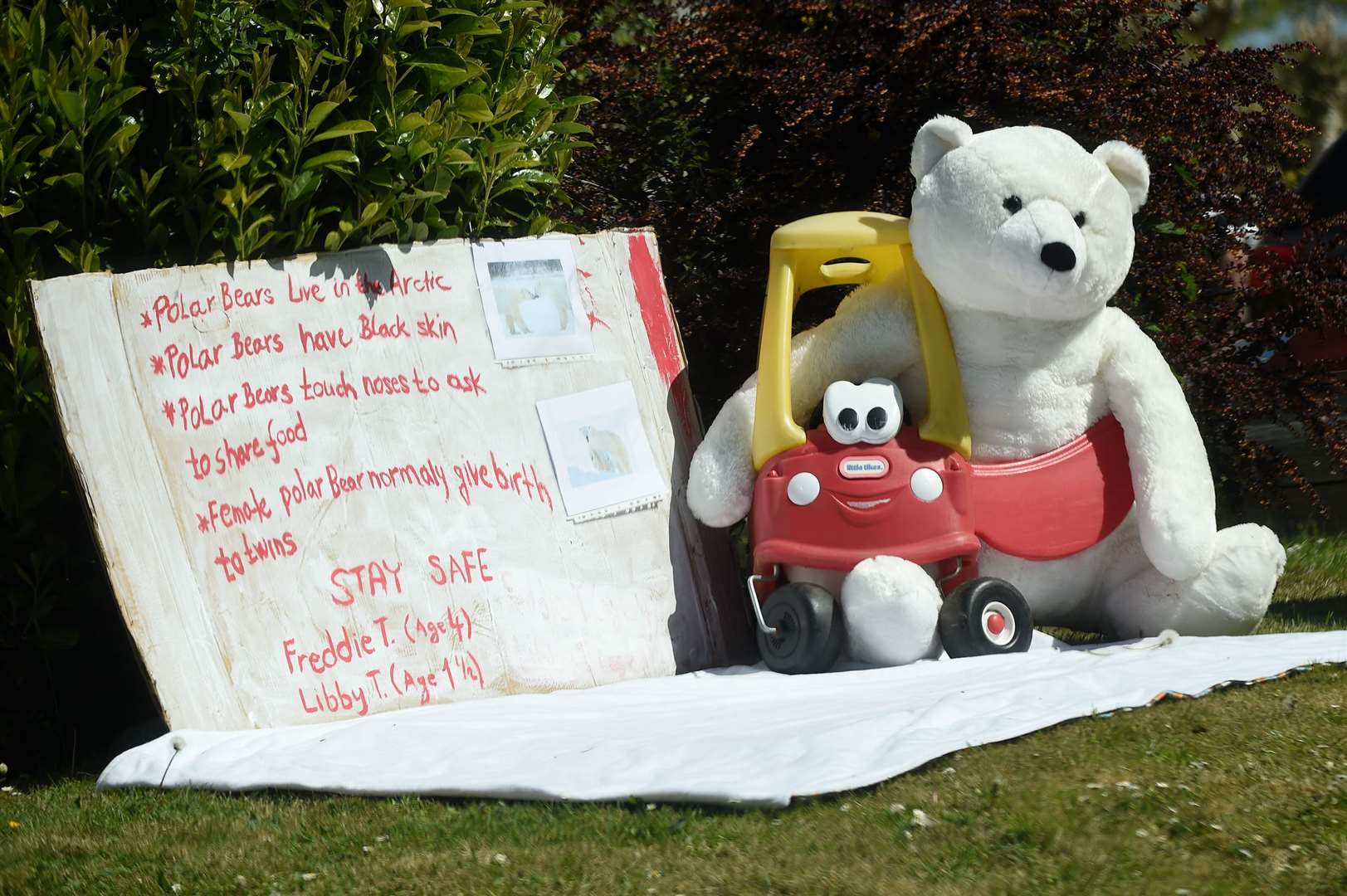 Acton Primary School teacher Katy Hammond has organised a zoo trail involving 60 households in Acton, which has encouraged children to create their own displays about animals for people to enjoy while walking in the village....PICTURE: Mecha Morton .... (34023157)