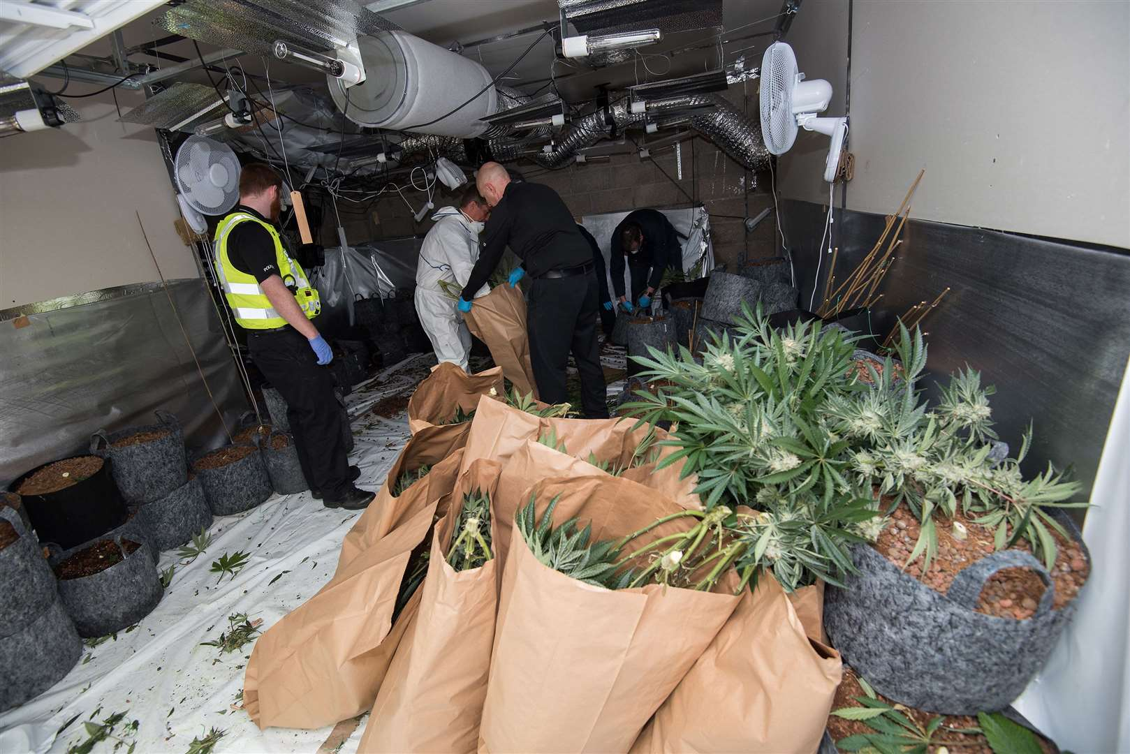 Armed police raided a house just outside Newmarket, seizing hundreds of cannabis plants. Earlier today Cambridgeshire Police entered the property in Fordham Road and found about £350,000 worth of cannabis plants. Picture by Mark Westley