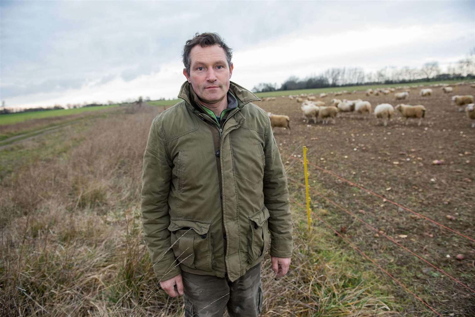 ACTON: Dog attack at farm..Acton farmer Jamie Gregory is urgently appealing for dog walkers to keep their pets on a leash when near livestock, after one of his sheep was seriously injured after being attacked by a dog that had gotten onto his farmland. Picture by Mark Westley. (6827609)
