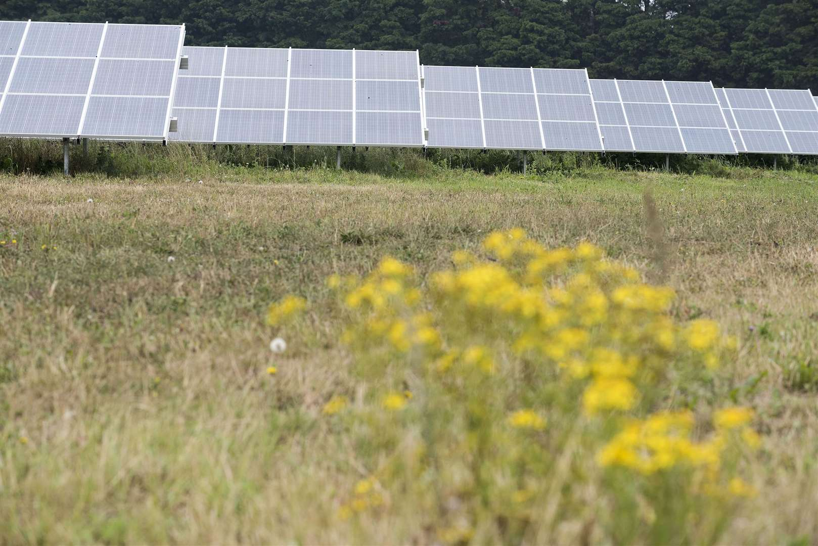 The council has already invested in one of the largest Council owned solar farms in the country.	Photo by Mark Westley.
