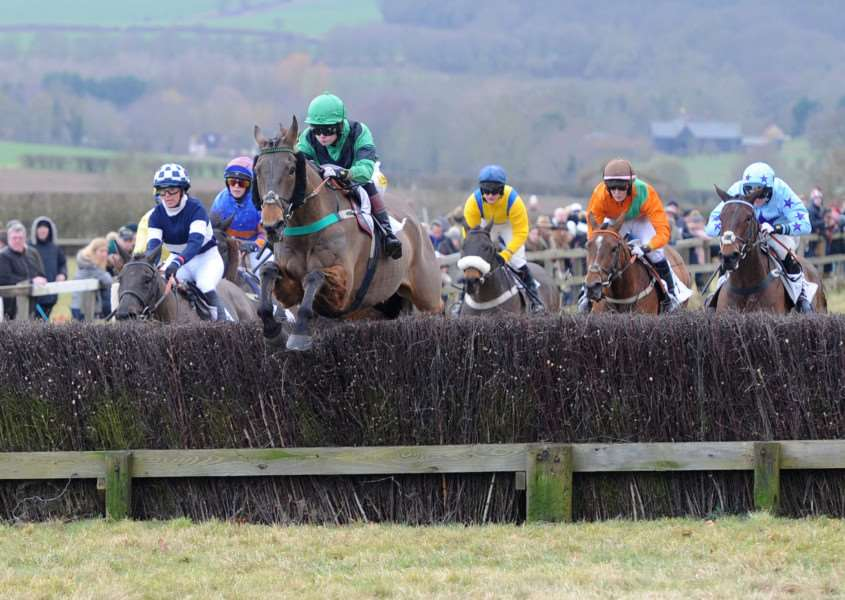 BIDING HER TIME: National Ladies Champion Gina Andrews (far right) pipped long-time race leader ' and favourite ' Goodnight Vienna (pictured jumping the fence) over the final hurdle on Blue Mountain Boy