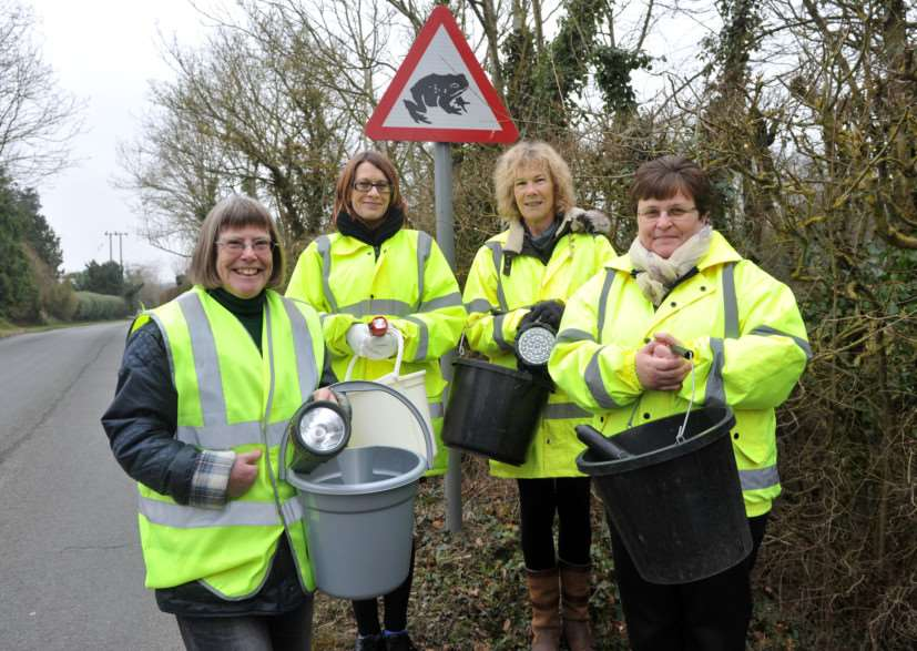 Frances Bee, left, with toad patrol volunteers Mel Bennington, Liz Miles and Rachael Sallis
