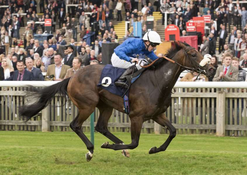 SPECIAL MOMENT: Really Special, ridden by champion jockey Jim Crowley on her way to victory in the Listed British Stallion Studs EBF Montrose Fillies' Stakes as the season drew to a close on Newmarket's Rowley Mile.