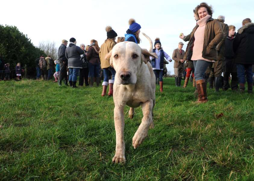 Boxing Day Hunt, Hawstead ANL-151227-172600009