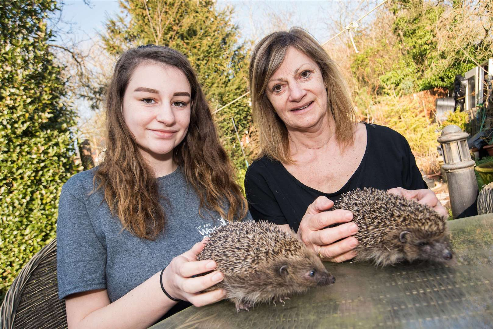 Chloe Knott is pictured with Sue Stubley who runs the Hedgehog Hospital, at Ousden, where she is a volunteer.