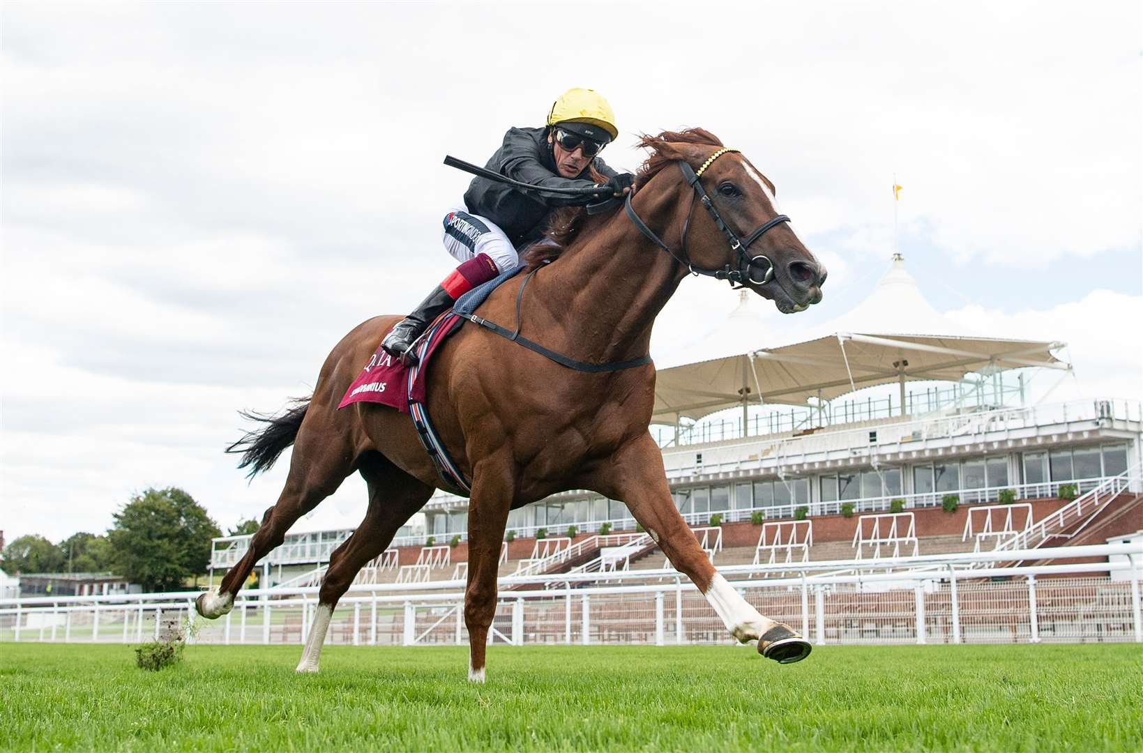 Stradivarius ( Frankie Dettori) wins the Al Shaqab Goodwood Cup for a historic fourth time.Glorious Goodwood28.7.20 Pic: Edward Whitaker/ Racing Post. (39383826)