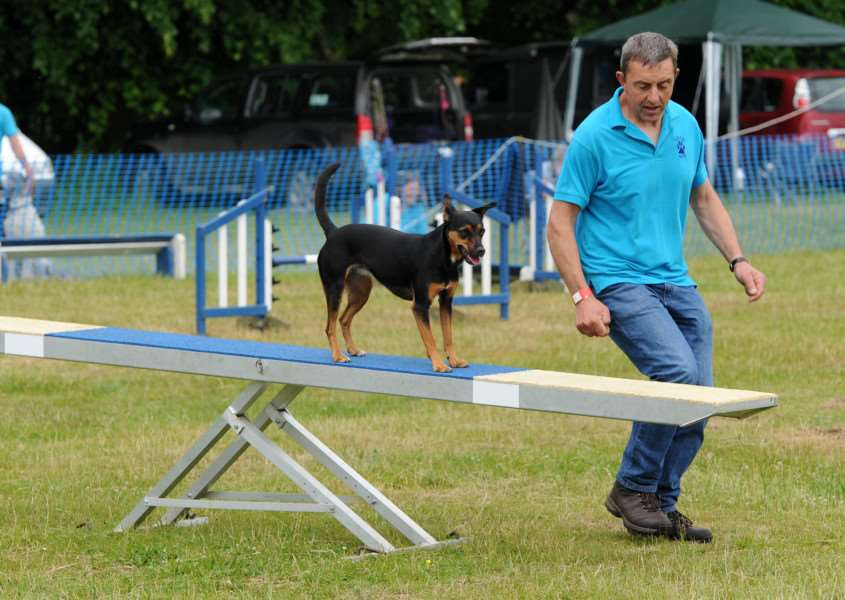 Dog agility was one of the many activities on offer