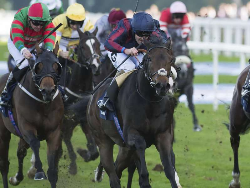 The Tin Man, ridden by Tom Queally, pictured winning at Ascot in October last year Picture: Edward Whitaker (Racing Post)