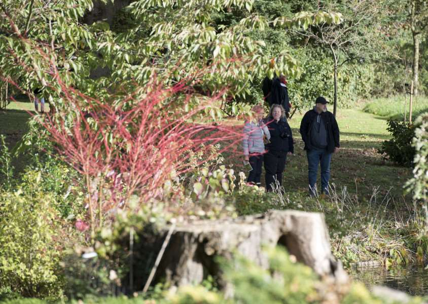 Daws Hall Nature Reserve, Henny Road, Lamarsh, Bures 'Daws Hall Autumn Colours Event - final family open day of 2017.''Picture Mark Westley
