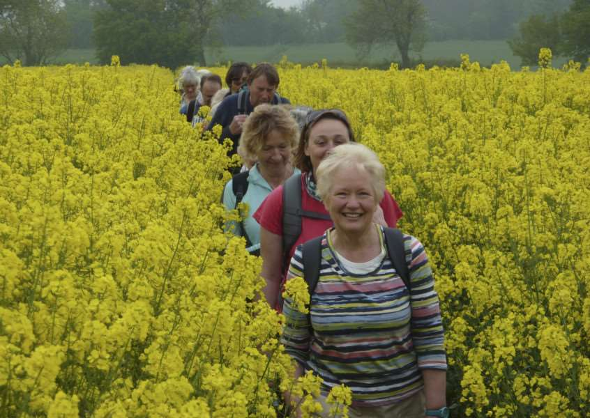 suffolk walking festival image from previous year ANL-160430-224415001