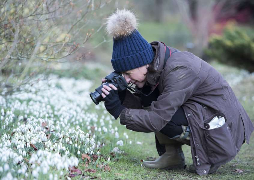 LAMARSH: Snowdrop festival'Daws Hall Nature Reserve, Daws Hall, Henny Road, Lamarsh'Photography student Katrina Grahame from Great Wigborough'Snowdrop Celebration'Picture Mark Westley