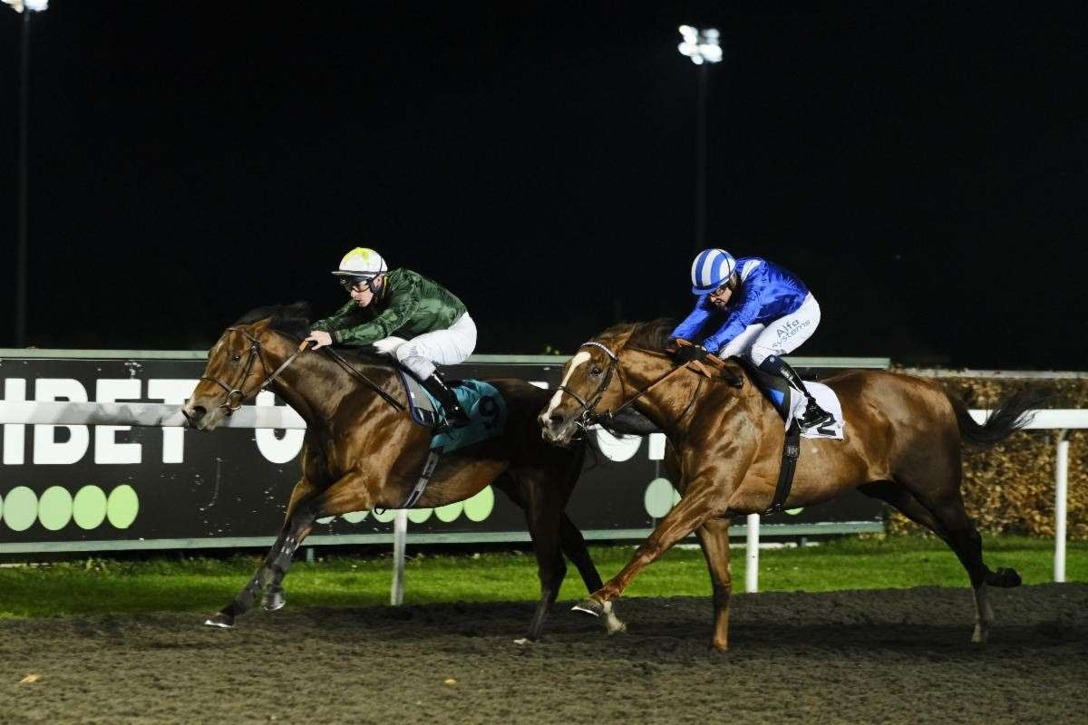 Roger Varian's Khuzaam finishing second to Kinross in the Hyde Stakes at Kempton Park in November