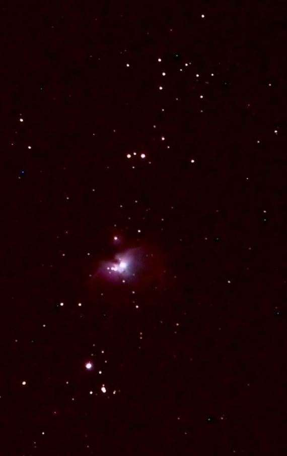 Orion Nebula. Astronomy in your back garden Picture: Paul Fellows (32847227)