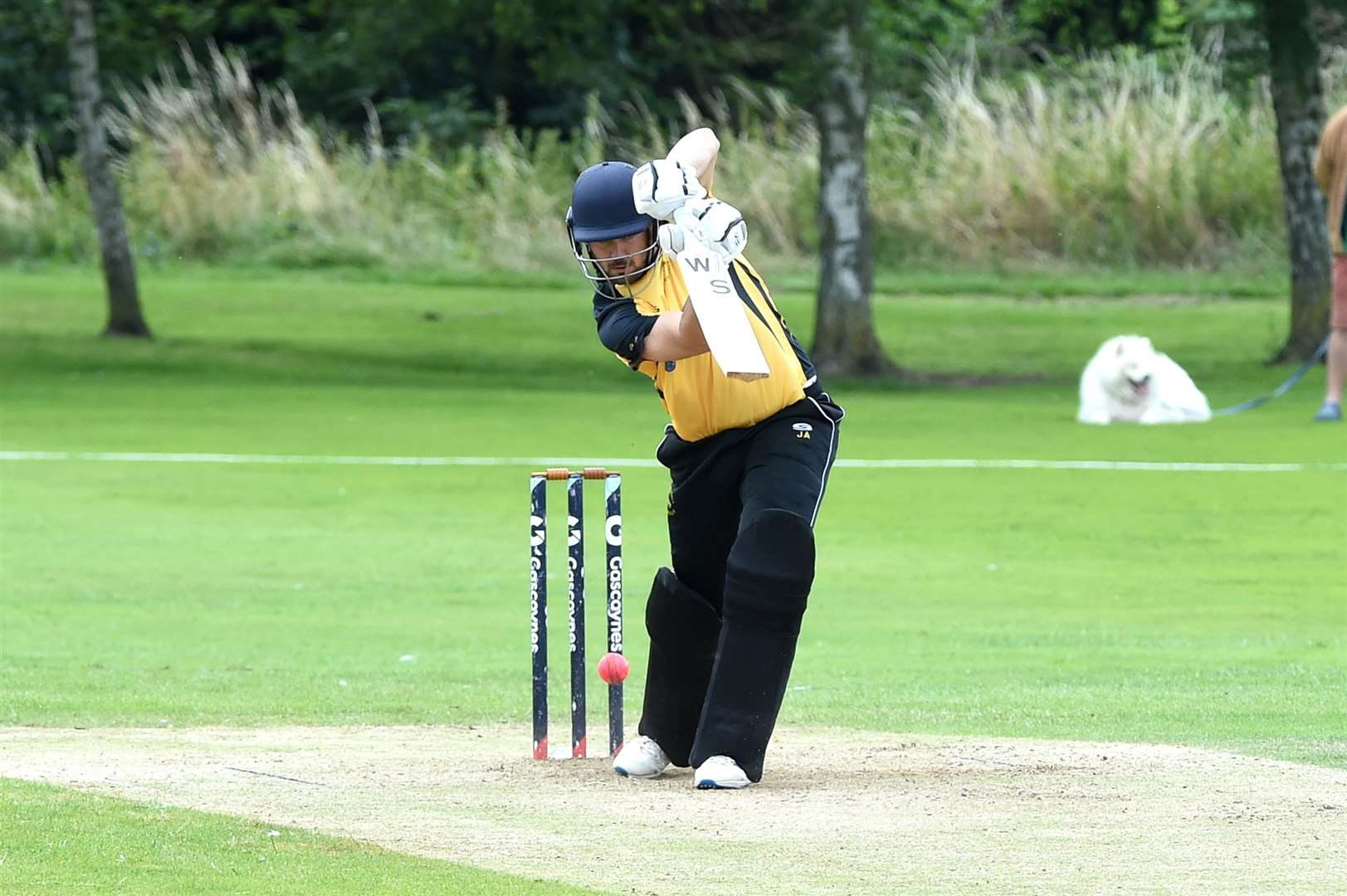 CRICKET - Mildenhall batting (M) v Sawston & Babraham fielding (S)..Pictured: Jack Potticary batting (M)...PICTURE: Mecha Morton..... (38778663)
