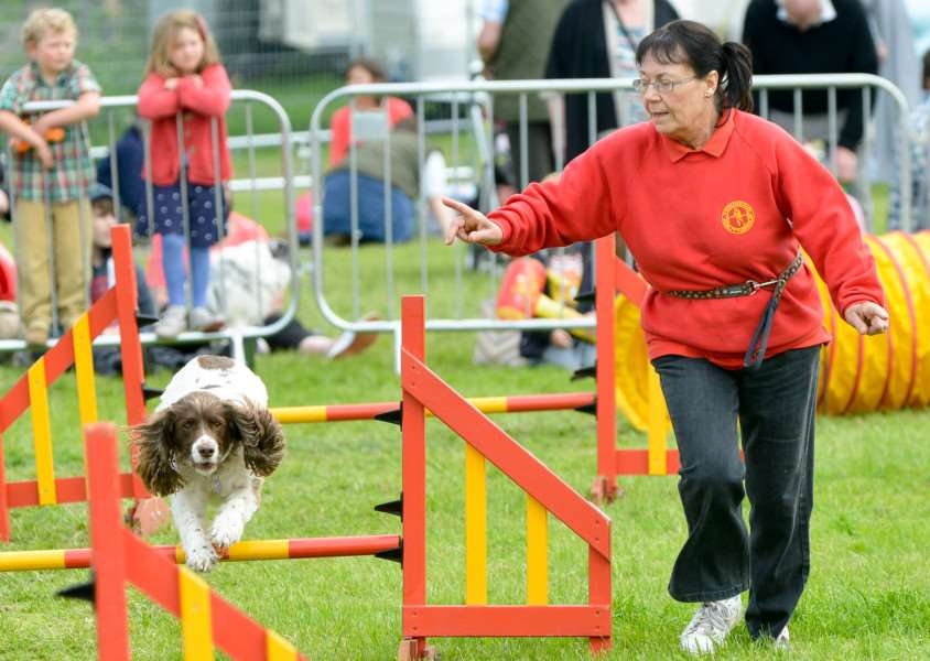 Hadleigh Show 2016 at Holbecks Park. Action from Tendring Dog Agility Group ANL-160522-142232009