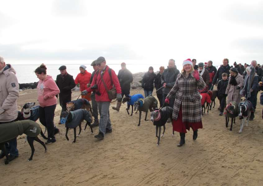 The Boxing Day dog walk along Felixstowe beach ANL-161220-122533001
