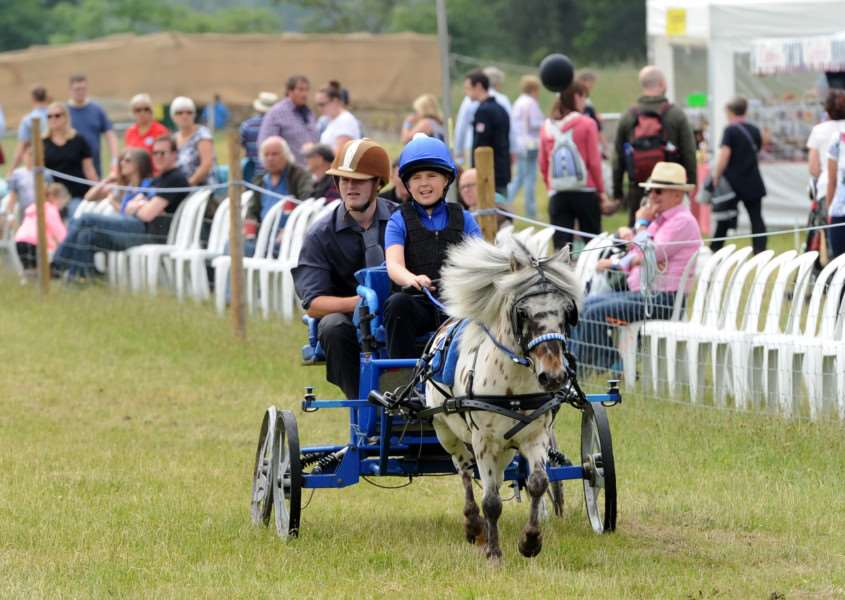 A driving challenge saw ponies pull carriages with a driver and groom around a timed obstacle course