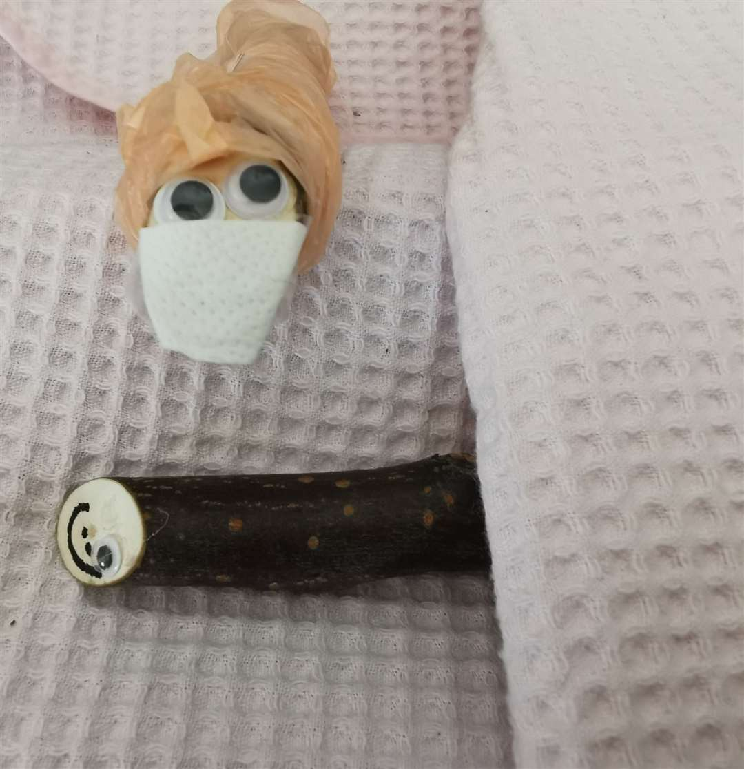 This Stick Pet had to go into surgery after losing an eye