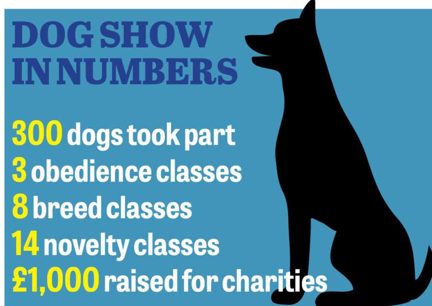 Dog show in numbers ANL-150728-123824001
