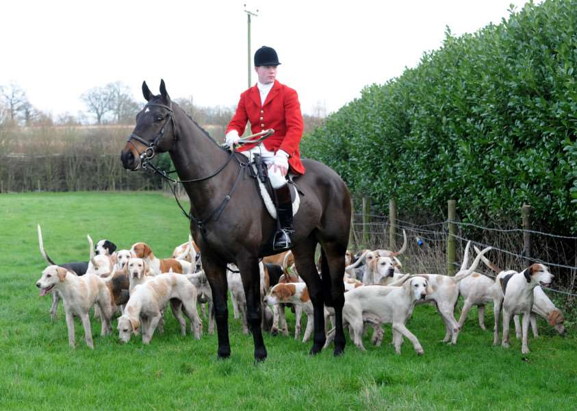 Boxing Day Hunt, Hawstead ANL-151227-171855009