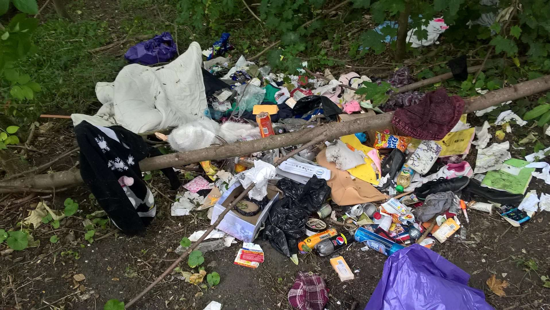 Joanne Phillips, 42, of Brendon Drive, Halstead, was ordered to pay a total of £550, after pleading guilty to fly tipping in Halstead, Little Maplestead and Ridgewell. Photo supplied by Braintree District Council. (4968556)